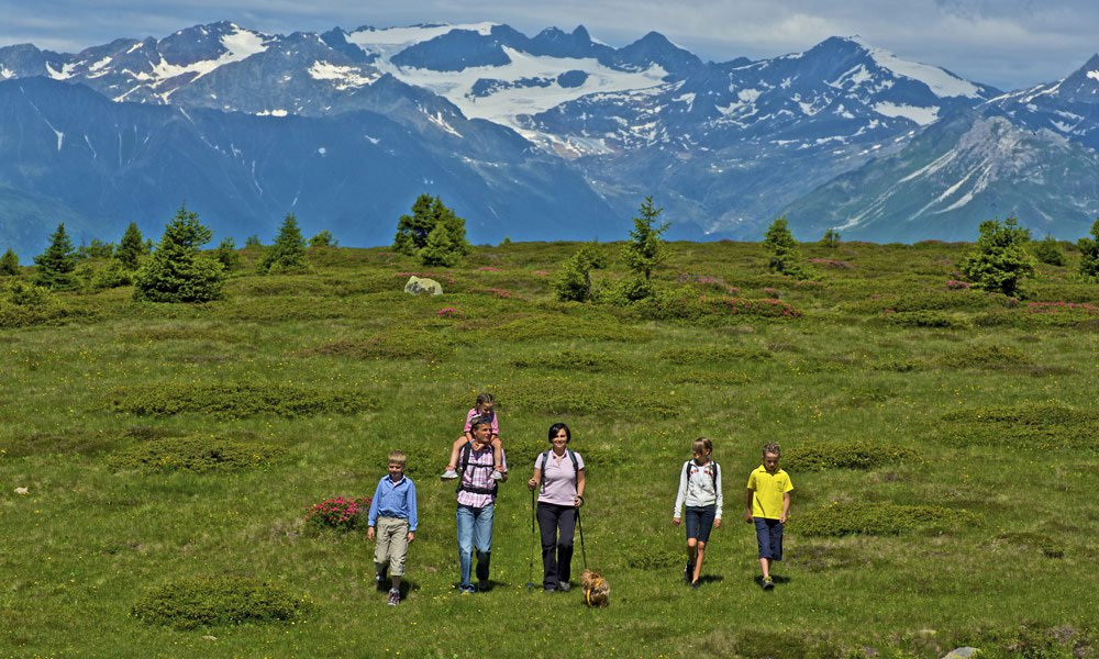 Alpine region Gitschberg Val Giovo:  The home for your vacation!