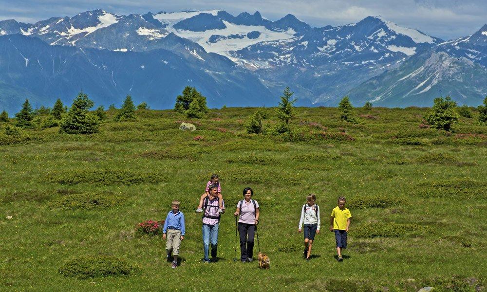 Almregion Gitschberg Jochtal: Hier ist der Urlaub zu Hause!