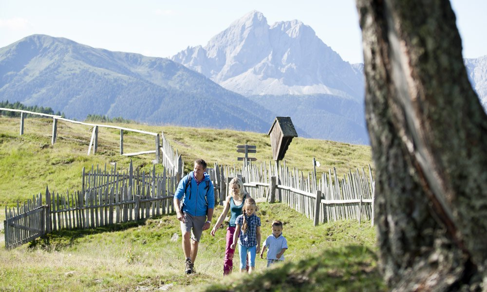 The Alpe di Rodengo:  A marvellous alpine plateau